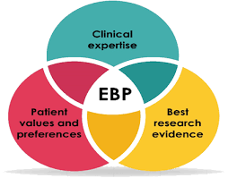 order an evidence based nursing paper
